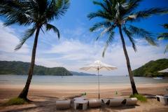 Coconut-Trees-on-the-Beach